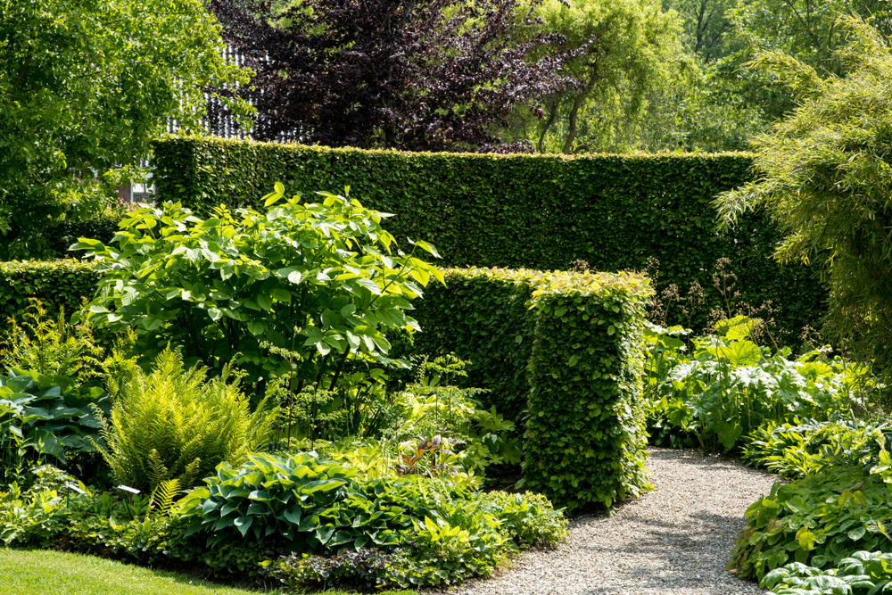 The Benefits Of Mixed Native Hedging - world of hedges
